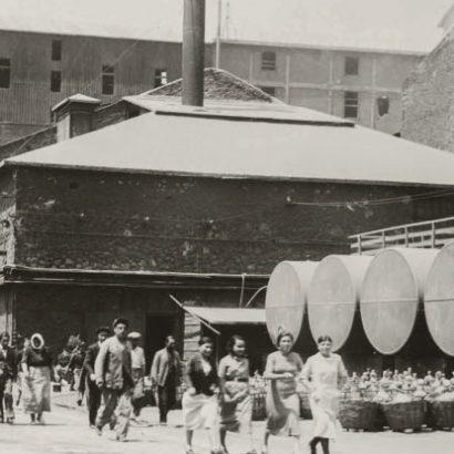 The fertilisers plant in Drapetsona